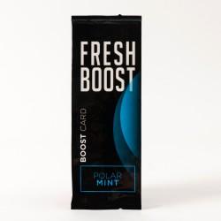 Carte Fresh Boost menthe polaire x20
